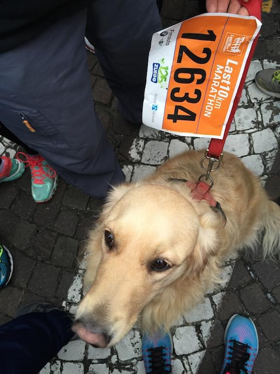 Maya al suo esordio nella 10 km