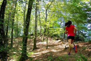 Di corsa nelle foreste Casentinesi