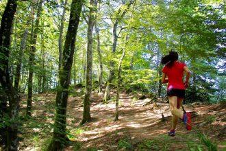 parco nazionale del casentini - running post