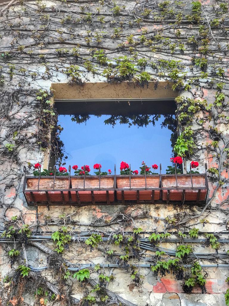 Porto Ercole - FOTO RUNNING POST