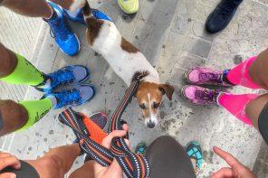 Sorpresa Cima Tauffi Trail