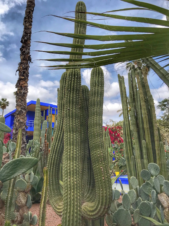 jardin majorelle, marrakechj - www.runningpost.it
