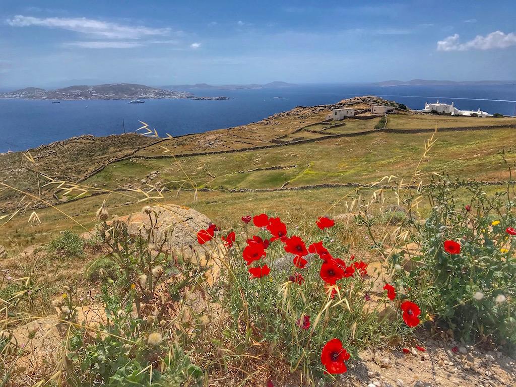 Mykonos, lungo la strada per il faro di Armenistis - www.runningpost.it